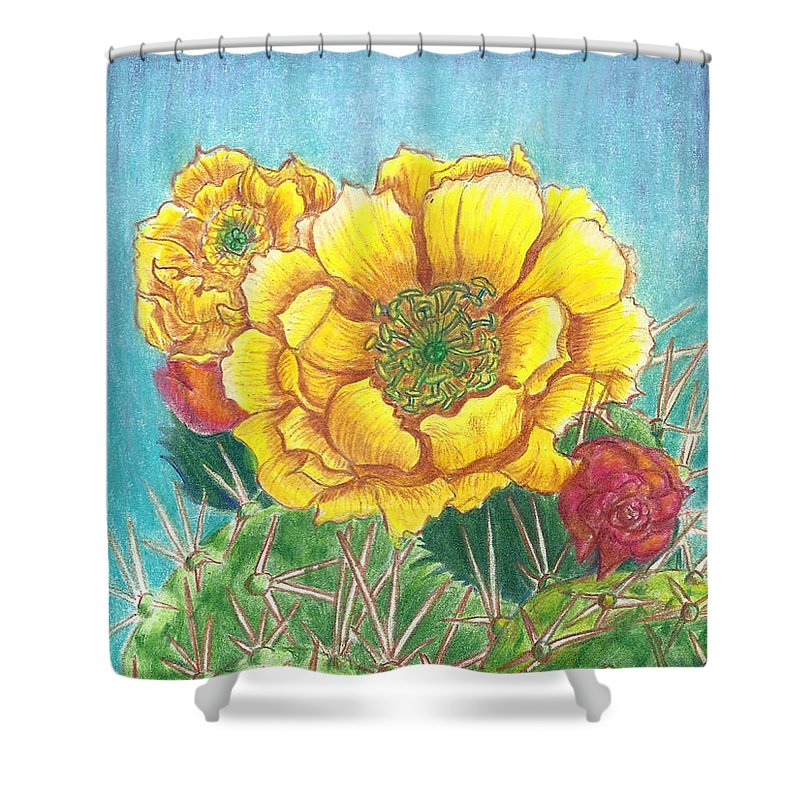 Floral Shower Curtain featuring the drawing Prickly Pear Cactus Flowering by Dawn Senior-Trask