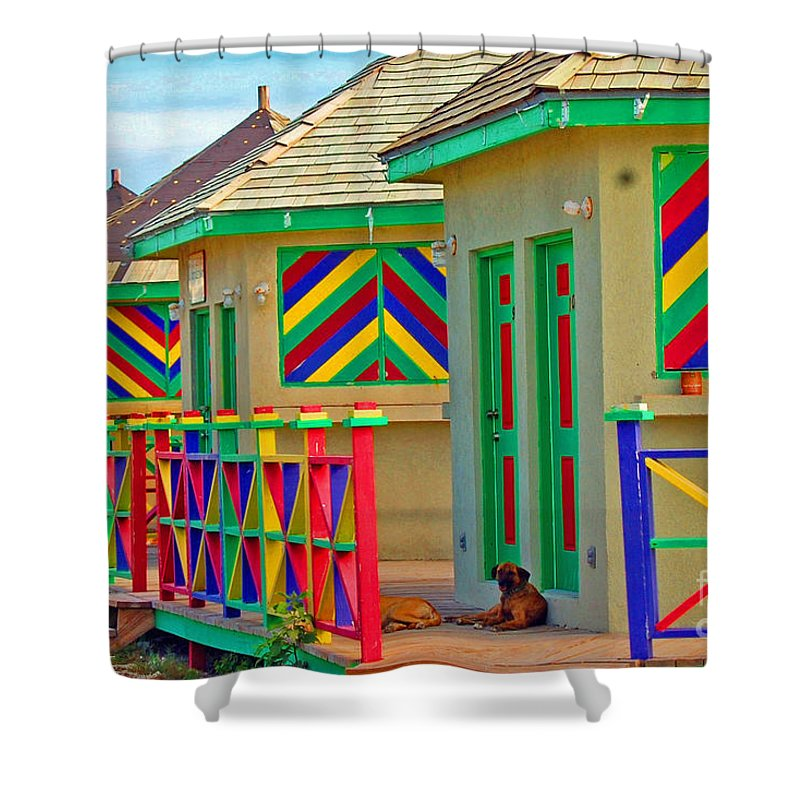 Vivid Shower Curtain featuring the photograph Primary Colors by Debbi Granruth