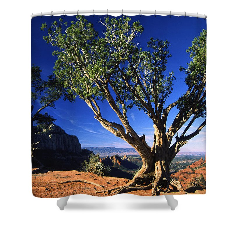 Arizona Shower Curtain featuring the photograph Primary Colors by Randy Oberg