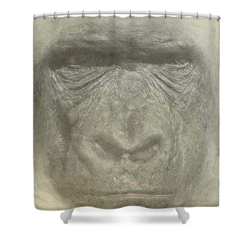 Primate Shower Curtain featuring the photograph Primate by Movie Poster Prints