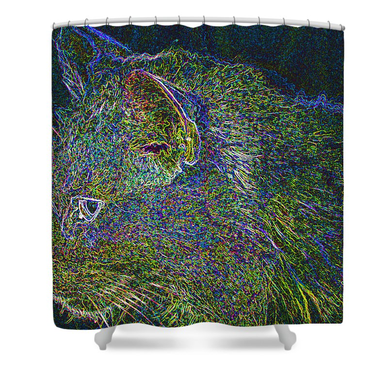 Cat Shower Curtain featuring the digital art Princess by Kenneth Albin