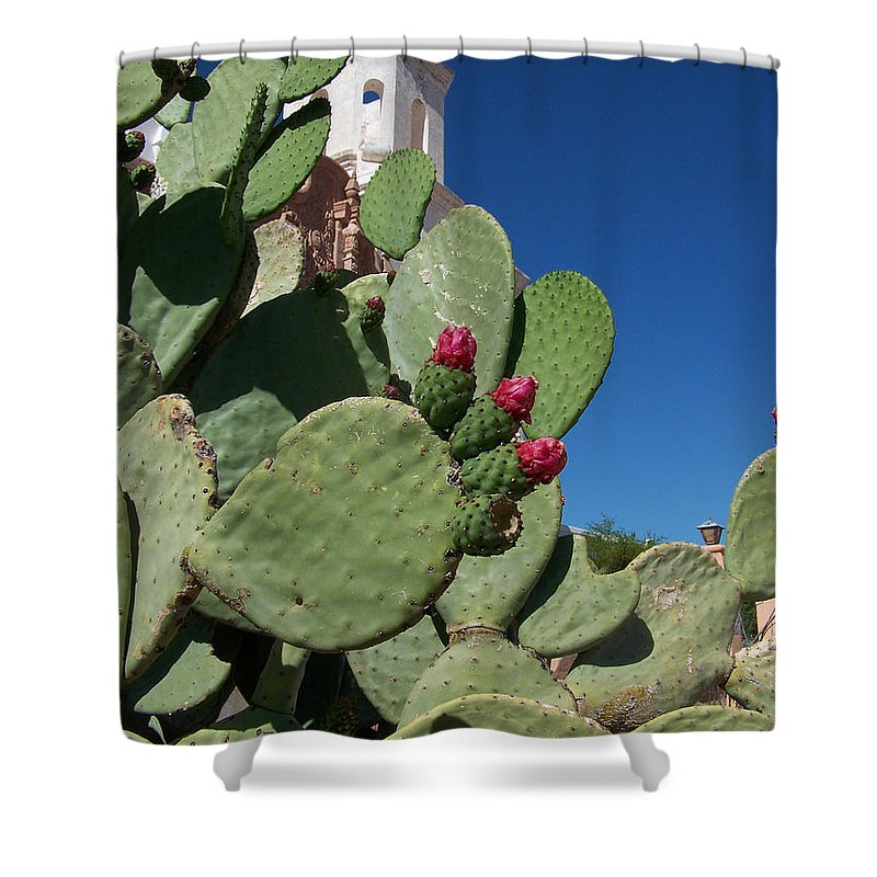 Cactus Shower Curtain featuring the photograph Promesas Cumplidas by Kathy McClure