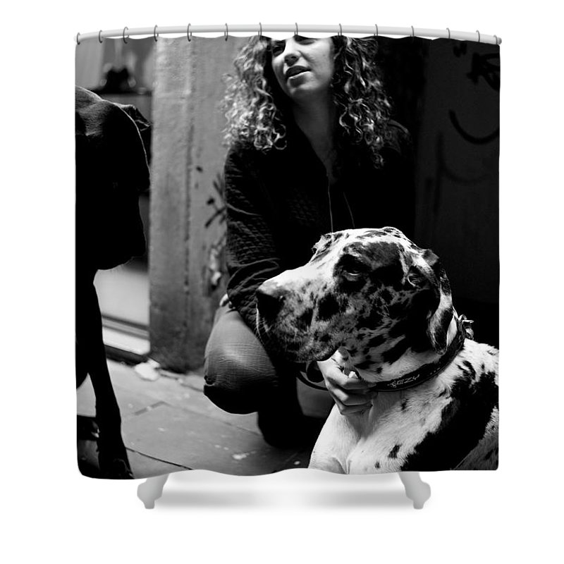Proud Danes Owner Shower Curtain featuring the photograph Proud Danes Owner by Win Naing