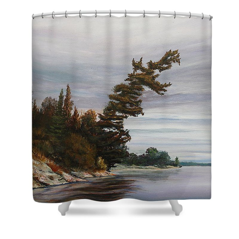 Landscape Shower Curtain featuring the painting Ptarmigan Bay by Ruth Kamenev