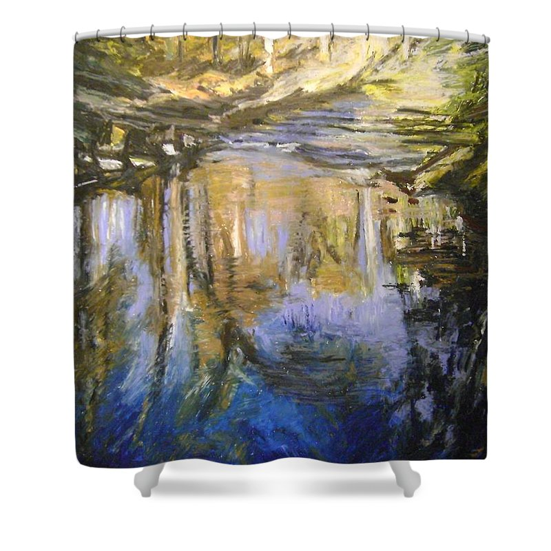 Puffers Pond Shower Curtain featuring the pastel Puffers Pond by Therese Legere