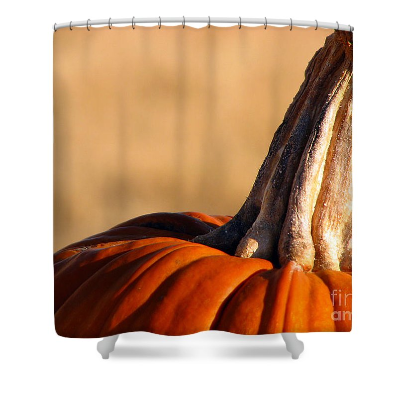 Pumpkins Shower Curtain featuring the photograph Pumpkin by Amanda Barcon