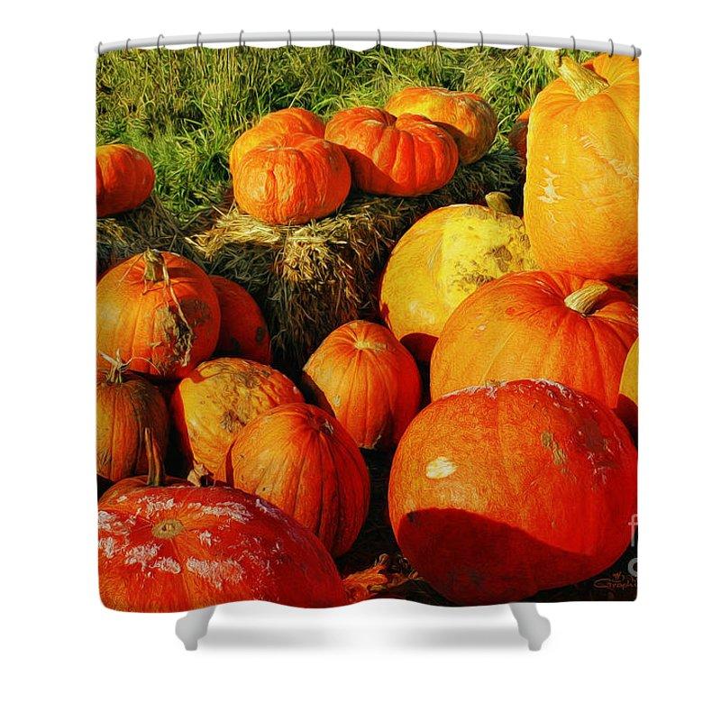Photo Shower Curtain featuring the photograph Pumpkin Meeting by Jutta Maria Pusl