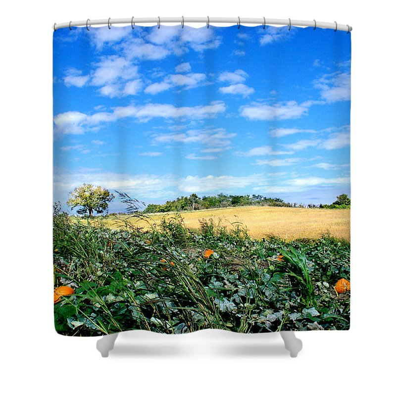 Landscape Shower Curtain featuring the photograph Pumpkin Patch by Steve Karol