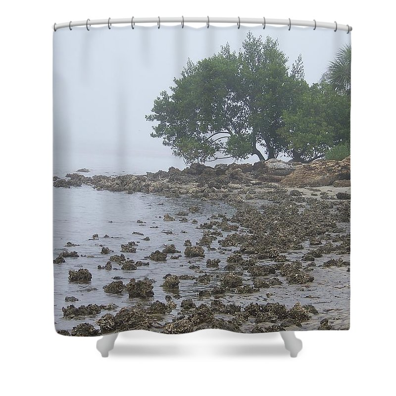 Mist Shower Curtain featuring the photograph Punta Gorda by Laurie Paci