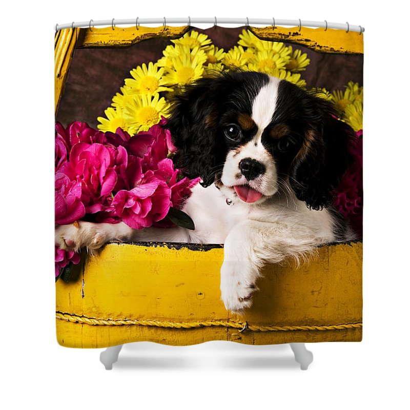 Puppy Dog Cute Doggy Domestic Pup Pet Pedigree Canine Creature Soccer Ball Shower Curtain featuring the photograph Puppy In Yellow Bucket by Garry Gay