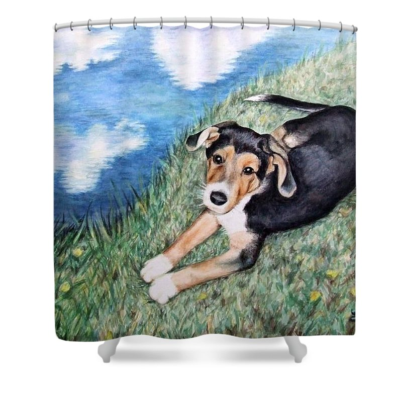 Dog Shower Curtain featuring the painting Puppy Max by Nicole Zeug