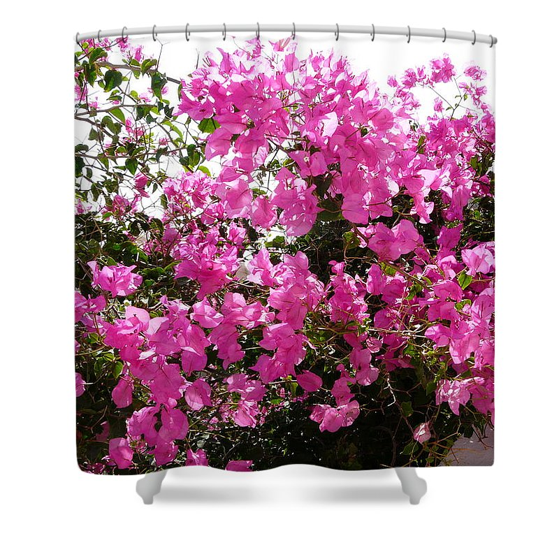 Bougainvillea Shower Curtain featuring the photograph Purple Abundance by Valerie Ornstein