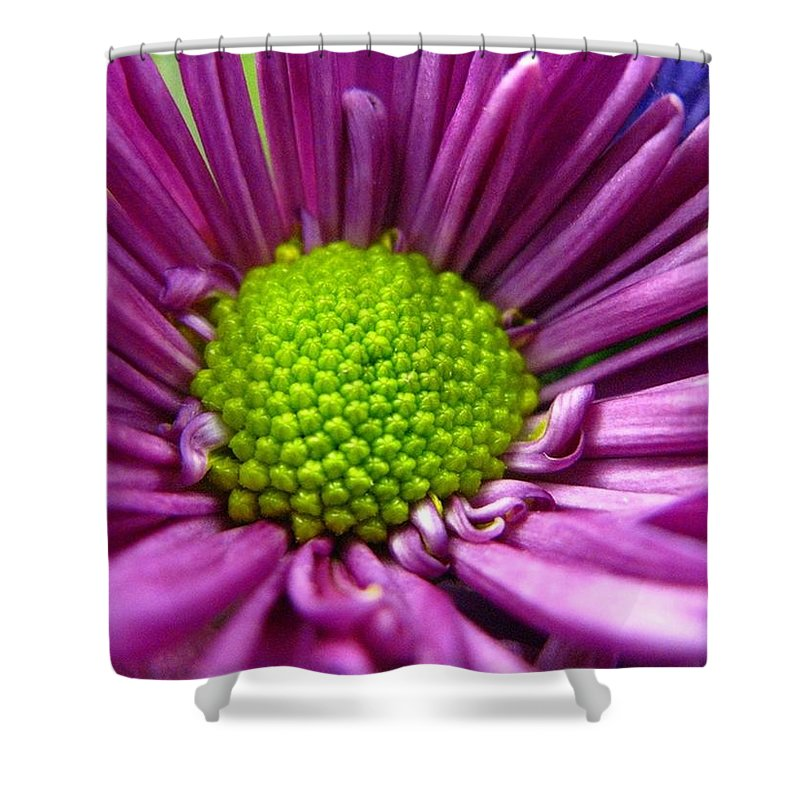 Flower Shower Curtain featuring the photograph Purple And Green by Rhonda Barrett