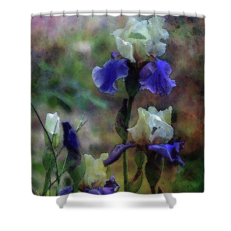 Purple Shower Curtain featuring the photograph Purple And White Irises 6647 Dp_2 by Steven Ward