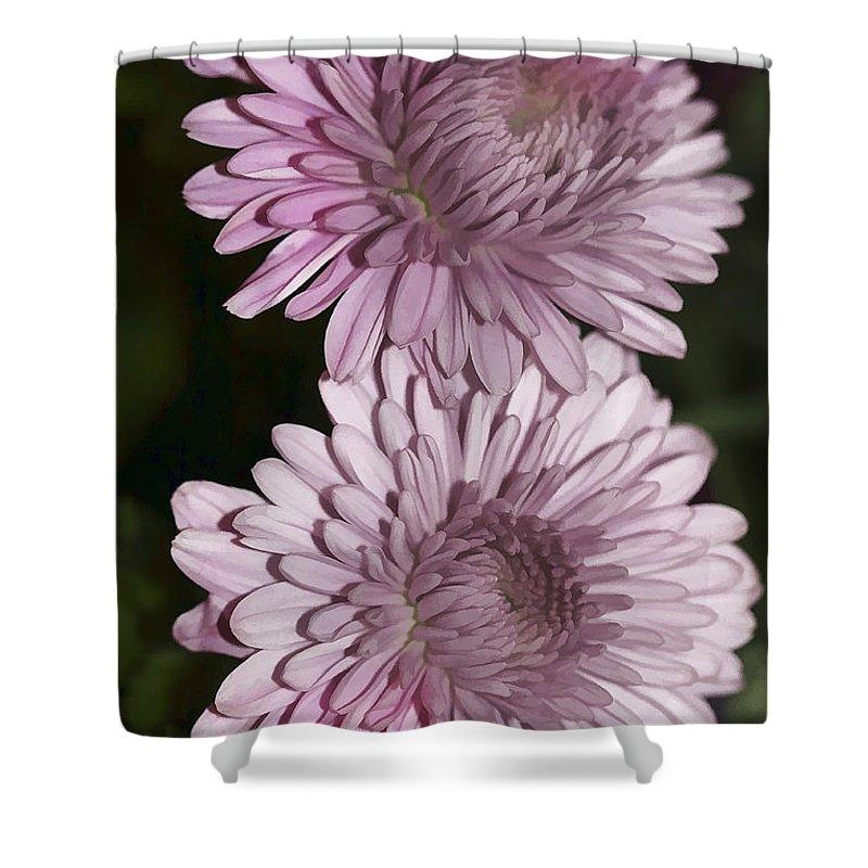 Flowers Shower Curtain featuring the photograph Purple Duo by Deborah Benoit