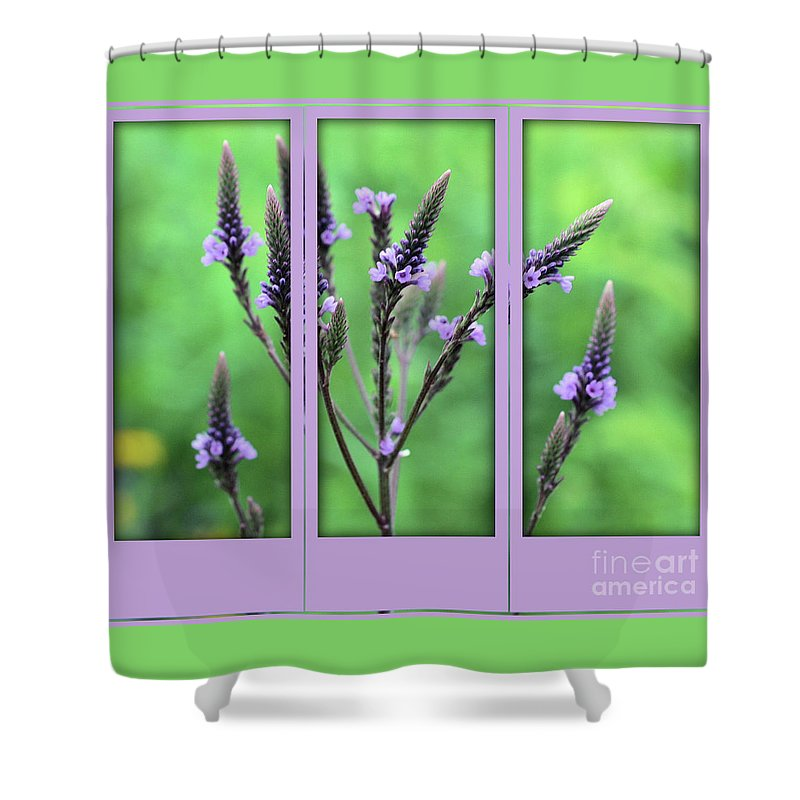 Flower Shower Curtain featuring the photograph Purple Flowers Through A Window by Smilin Eyes Treasures