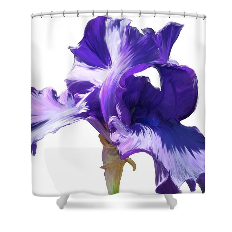 Flower Shower Curtain featuring the photograph Purple Iris by Angel Bentley