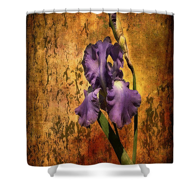 Purple Iris At Sunset Shower Curtain featuring the photograph Purple Iris At Sunset by Bellesouth Studio