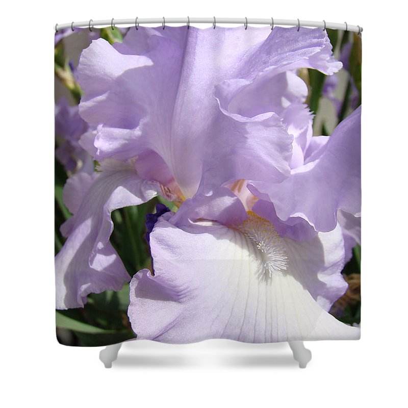 �irises Artwork� Shower Curtain featuring the photograph Purple Irises Artwork Lavender Iris Flowers 13 Botanical Floral Art Baslee Troutman by Baslee Troutman