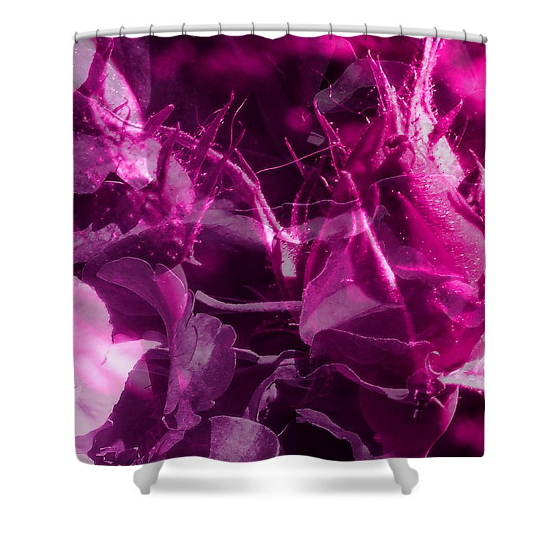 ruth Palmer Shower Curtain featuring the digital art Purple Rose And Pansy by Ruth Palmer