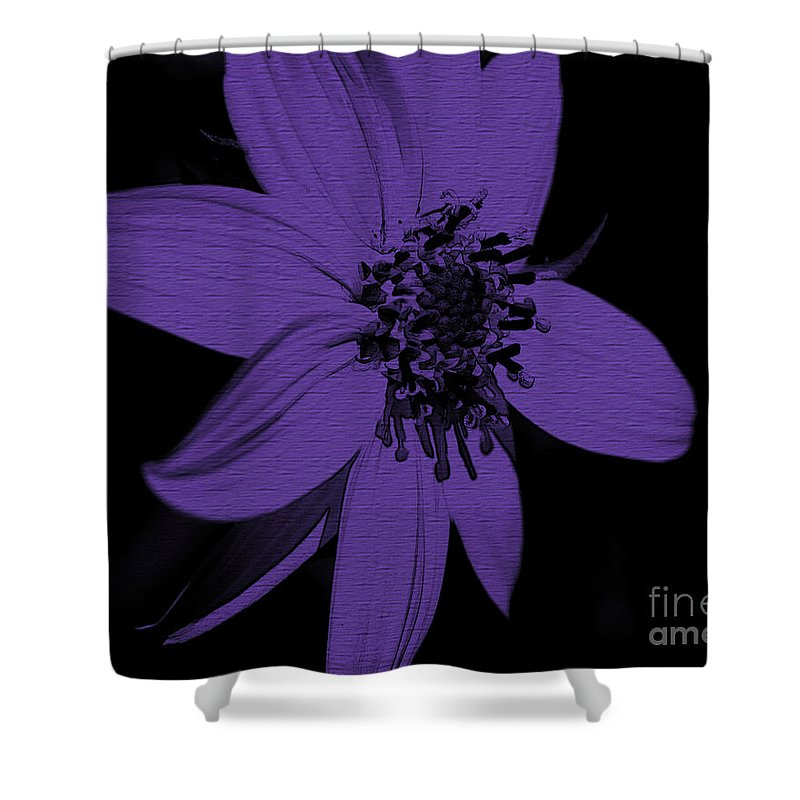 Flower Shower Curtain featuring the photograph Purple Sunflower by Smilin Eyes Treasures