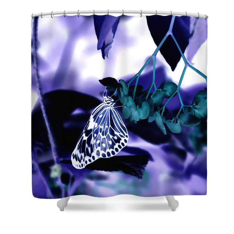 Purple Shower Curtain featuring the photograph Purple Teal And A White Butterfly by Tracy Winter