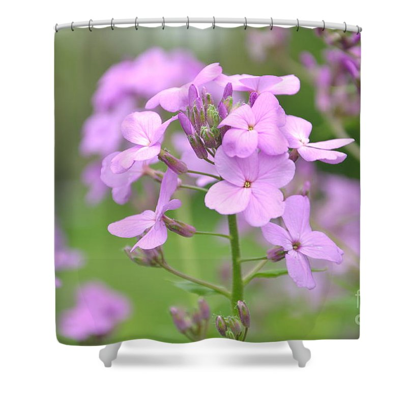 Flower Shower Curtain featuring the photograph Purple Wildflowers Two by Juanita Doll