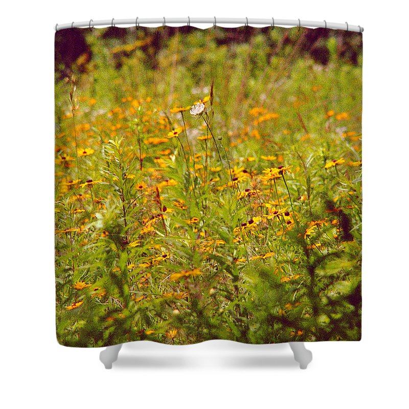 Flower Shower Curtain featuring the photograph Queen Ann by Randy Oberg