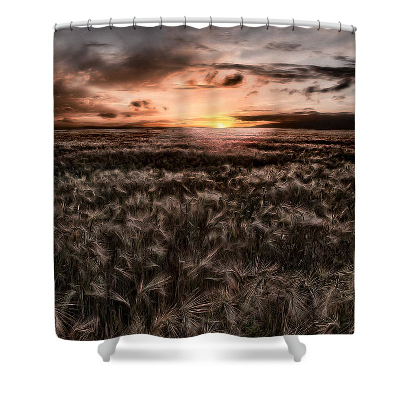 Summer Shower Curtain featuring the photograph Quiet Estivation by Joachim G Pinkawa
