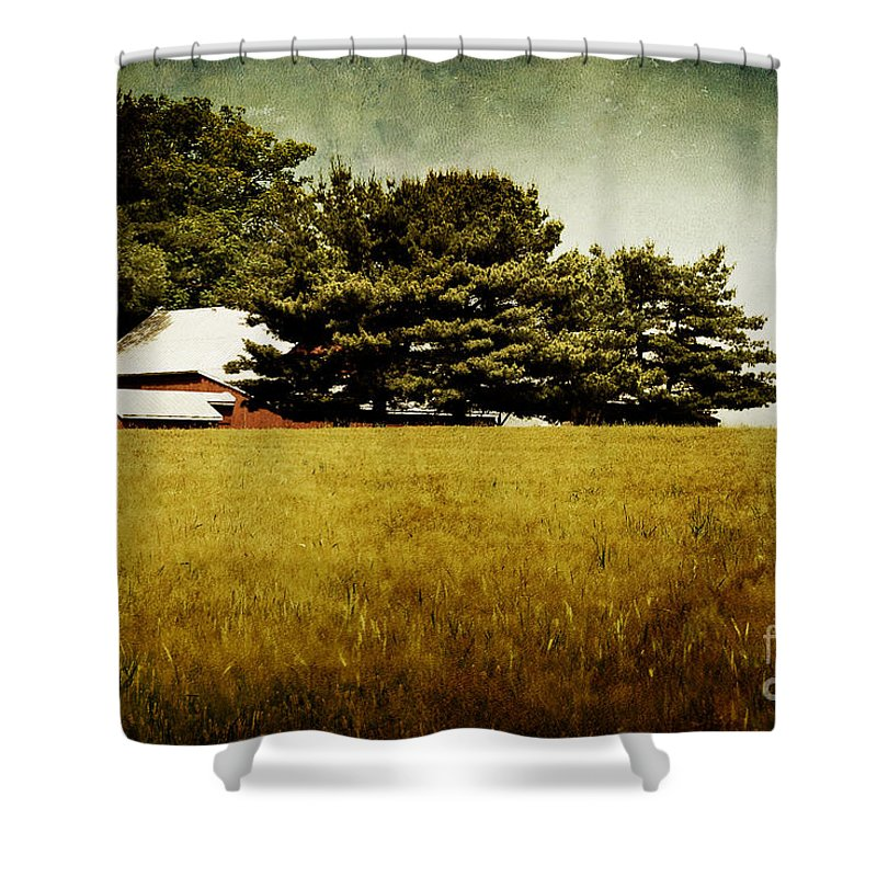 Barn Shower Curtain featuring the photograph Quiet by Lois Bryan
