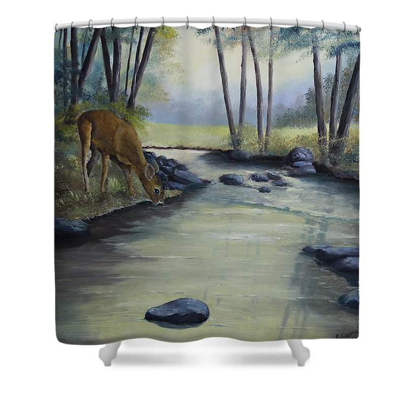 Landscape Shower Curtain featuring the painting Quiet Moments by Johanna Lerwick