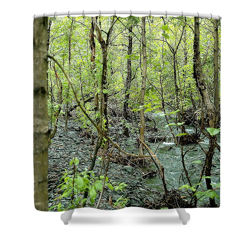 Landscape Shower Curtain featuring the photograph Quiet Stream by Mark Lemon