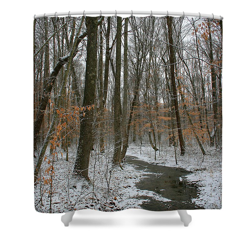 Forest Woods Water Winter Tree Snow Cold Season Nature Shower Curtain featuring the photograph Quite Path by Andrei Shliakhau