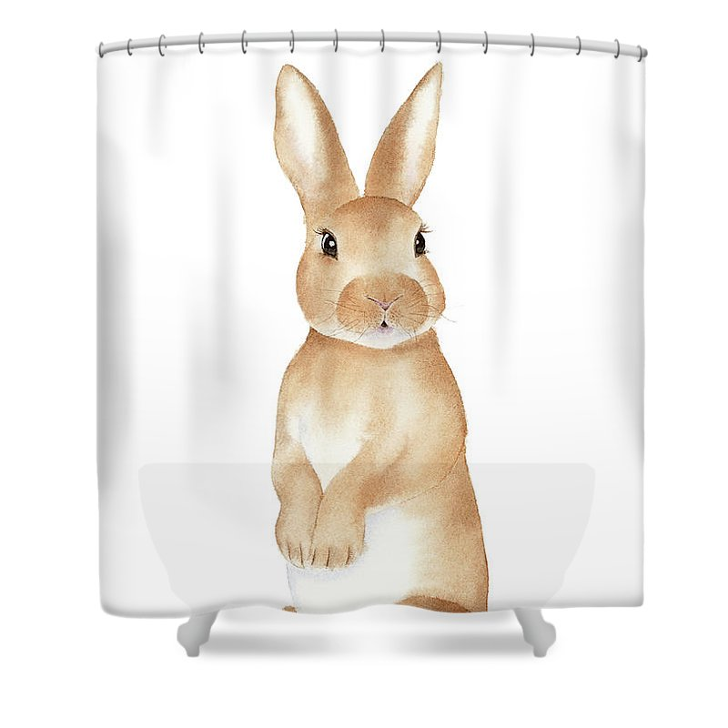 Rabbit Watercolor Shower Curtain For Sale By Zapista
