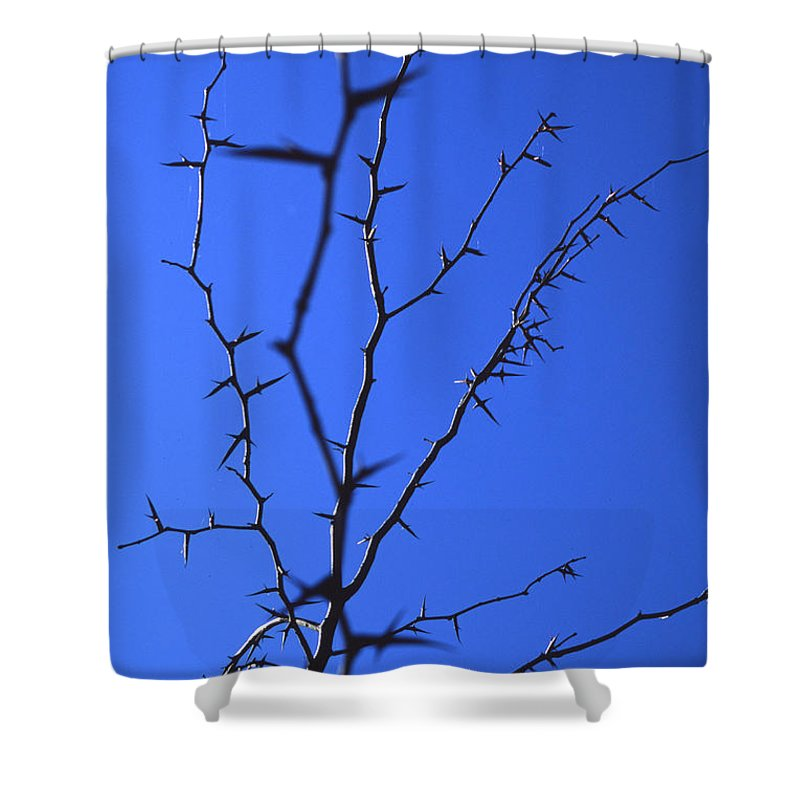 Nature Shower Curtain featuring the photograph Ragged Edges by Randy Oberg