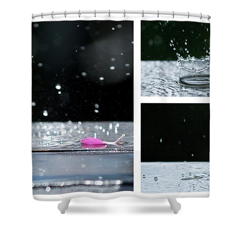 Lisa Knechtel Shower Curtain featuring the photograph Rain by Lisa Knechtel