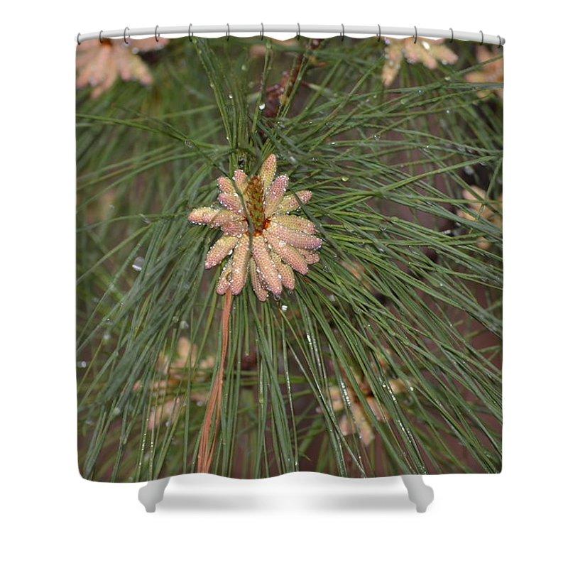Rain Shower Curtain featuring the photograph Rain N Flower by Meg M