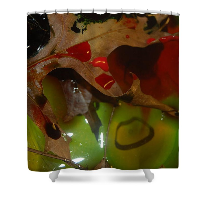 Abstract Shower Curtain featuring the photograph Rainbow Leaves 1 by Alwyn Glasgow