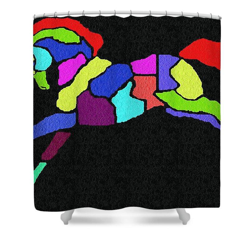 Digital Shower Curtain featuring the digital art Rainbow Pony by Sara Raber