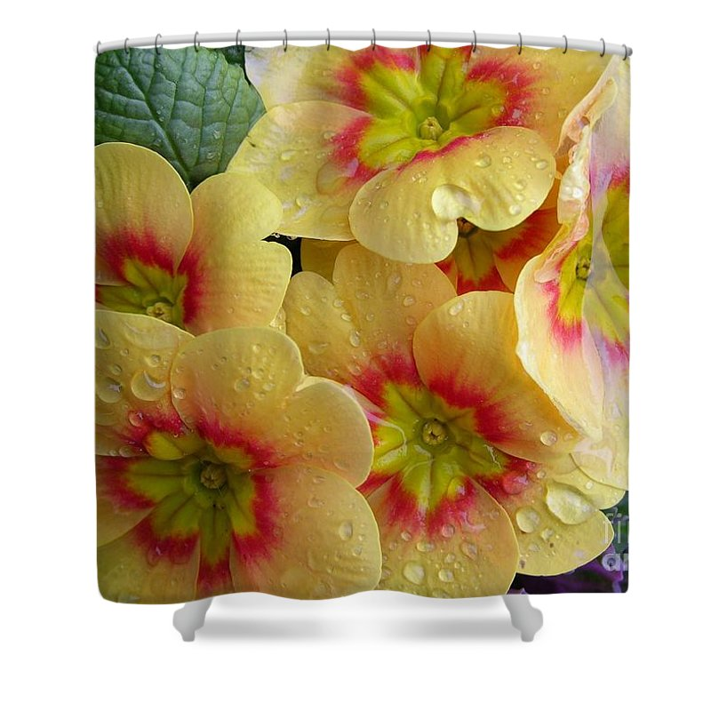 Yellow Flowers Shower Curtain Featuring The Photograph Raindrops On By Carol Groenen