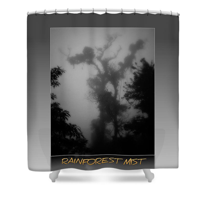 Tree Shower Curtain featuring the photograph Rainforest Mist II by Perry Webster
