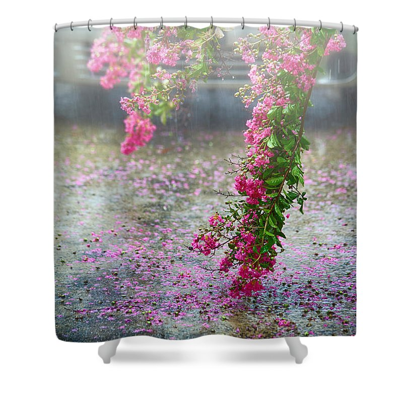 Rain Shower Curtain featuring the photograph Rainy Day by Inho Kang