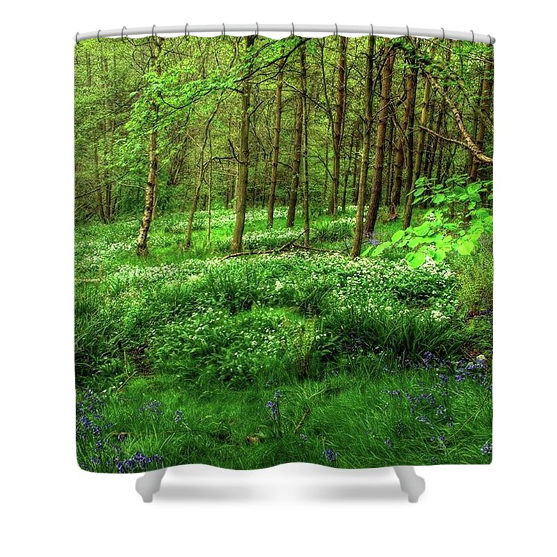 Nature Shower Curtain featuring the photograph Ramsons And Bluebells, Bentley Woods by John Edwards
