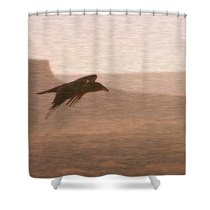 Bird Shower Curtain featuring the photograph Raven 1 by David Halperin
