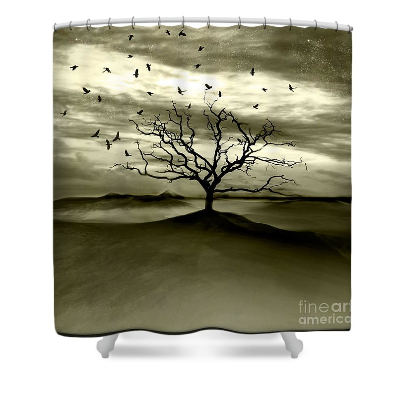 Landscape Shower Curtain featuring the photograph Raven Valley by Jacky Gerritsen