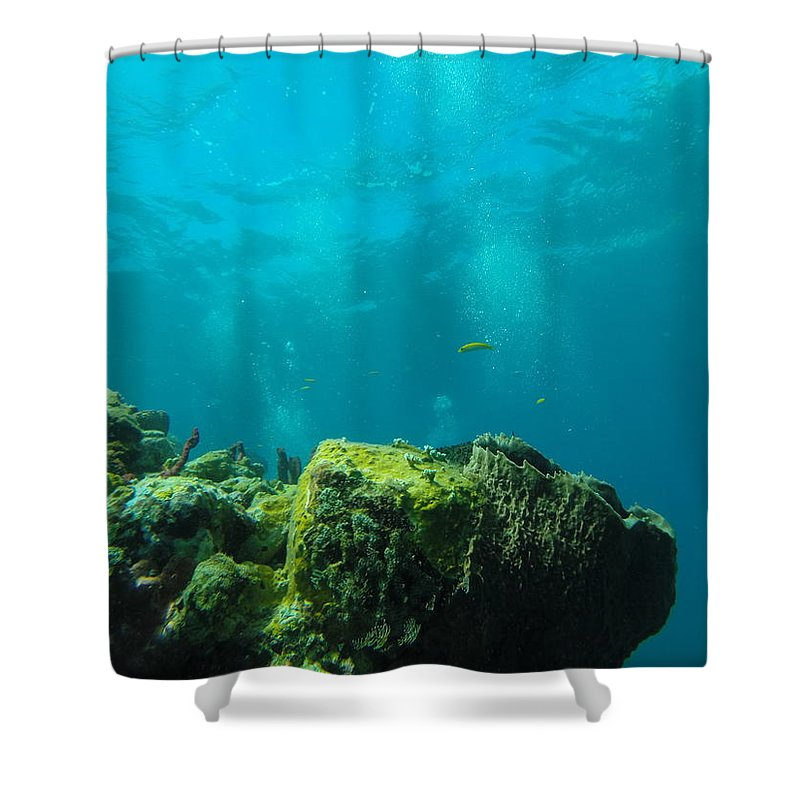 Scuba Diving Shower Curtain featuring the photograph Rays Of Light by Angela Niesz