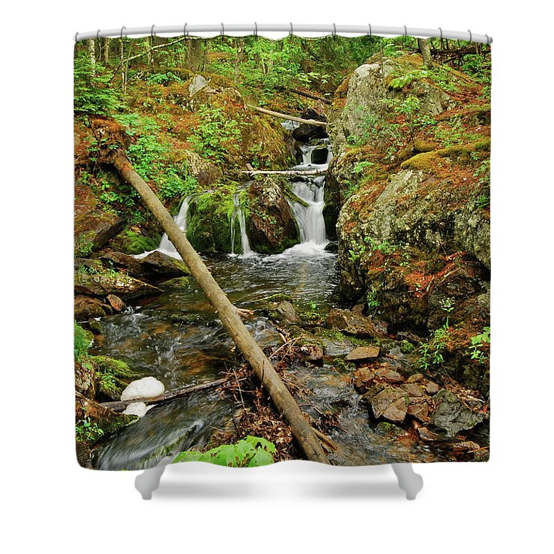 Reany Falls Shower Curtain featuring the photograph Reany Falls 2 by Michael Peychich
