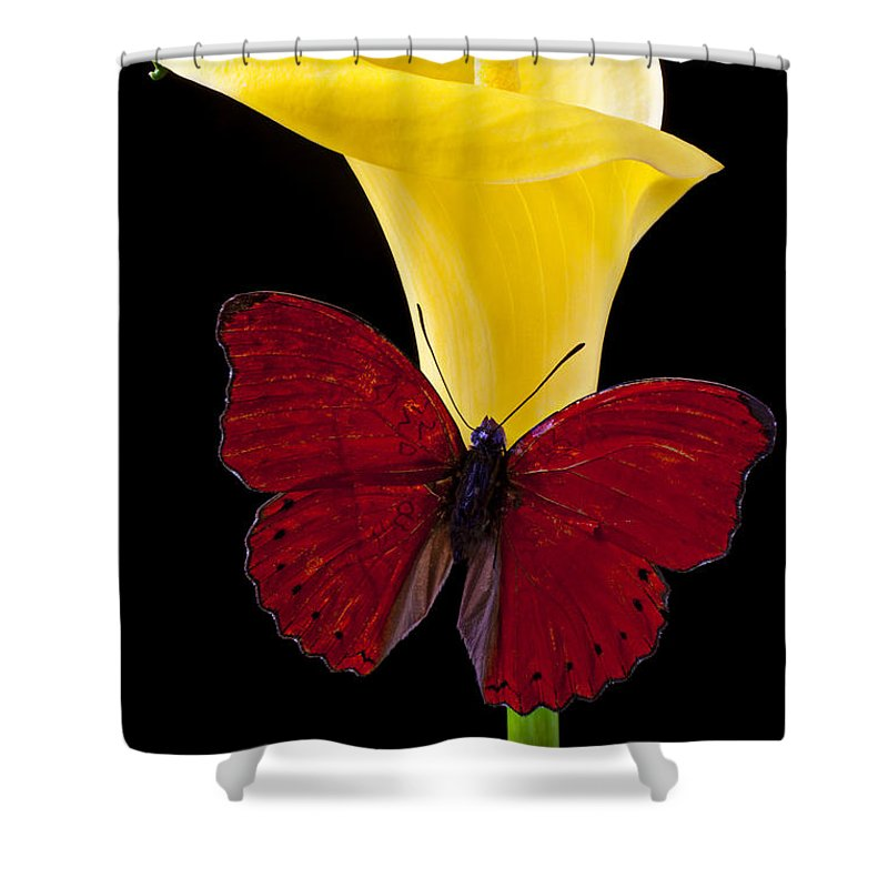 Red Butterfly Shower Curtain Featuring The Photograph And Calla Lily By Garry Gay