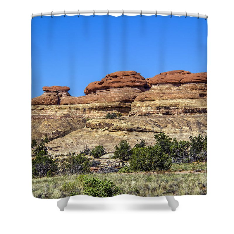 Needles Shower Curtain featuring the photograph Red Caps by Roberta Bragan