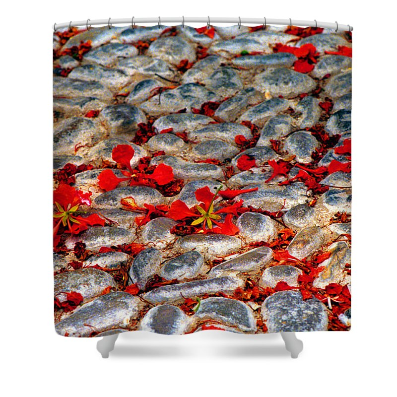 Red Shower Curtain featuring the photograph Red Cobblestone Road by James BO Insogna